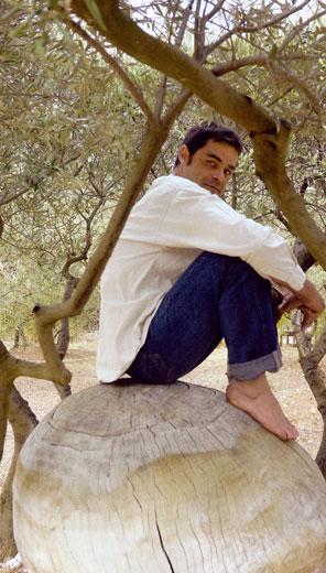 Marc Nucera, travail du bois, sculpteur arbre